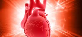 cuore-header