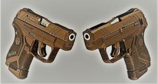ruger-lite-rack-22lr-front-duo-1024x571